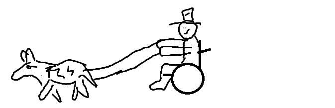 Wheelchair Husky