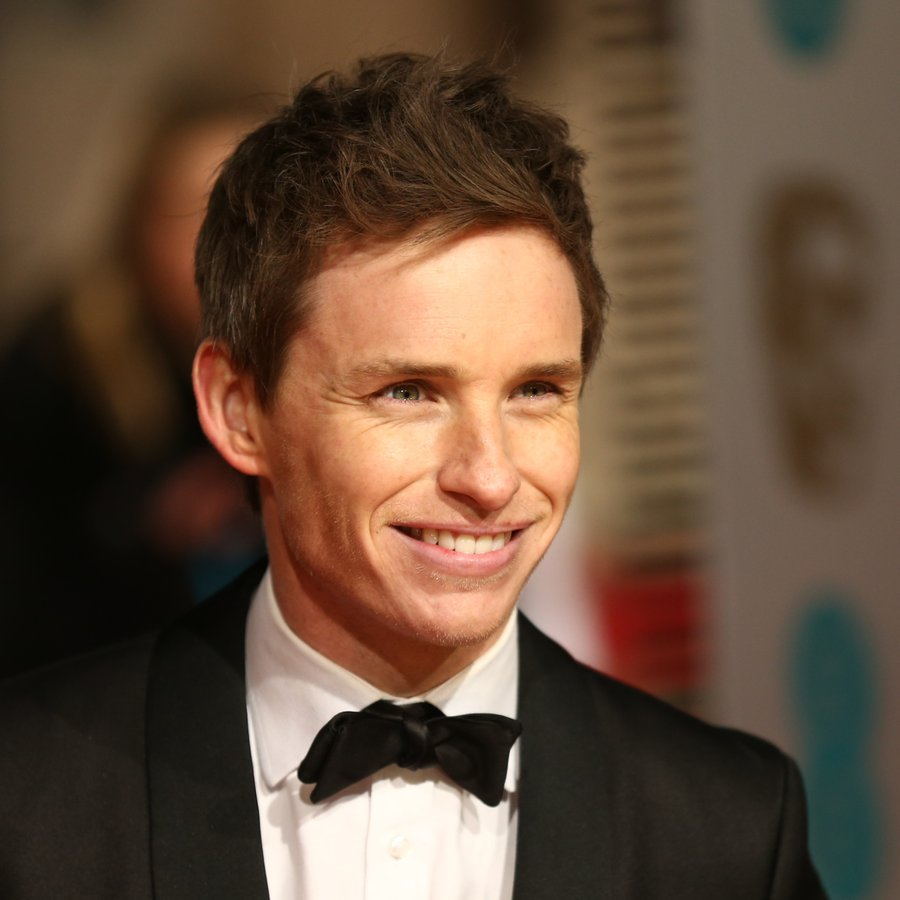 Eddie Redmayne Confirms He Never Dated Taylor Swift