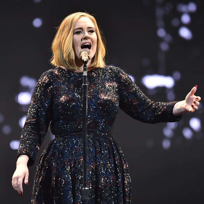 Adele Live Rolling In The Deep: WATCH: Adele Helps Fan Propose To Her Man During Live Show