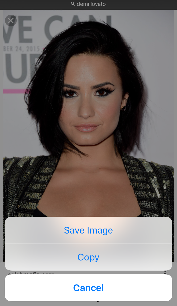 demi lovato save image