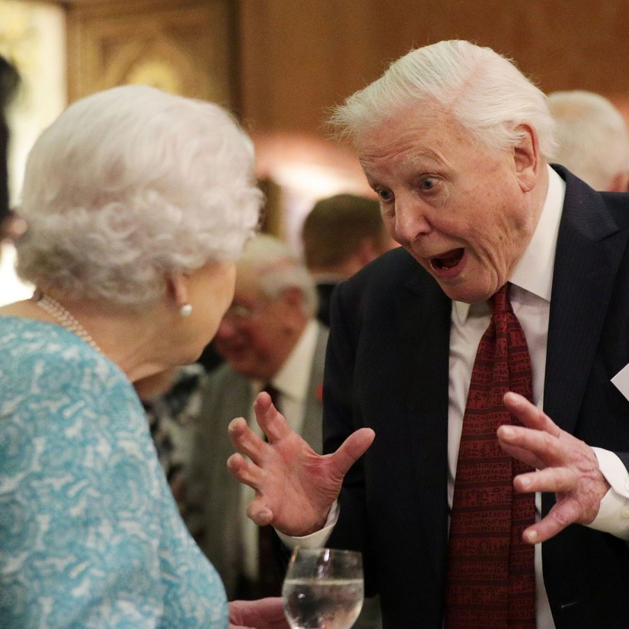 David Attenborough The Queen Hosts A Reception To Showcase The Queen's Commonwealth Canopy
