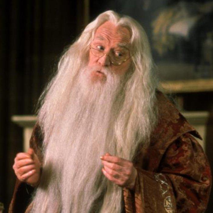 albus dumbledore name